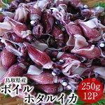 ホタルイカボイルホタルイカ3kg【250g×12p】鳥取県日本海ブランド食べやすい新鮮鮮度抜群【送料無料】