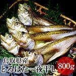 とろはたハタハタ一夜干し大ぶりのはたはた日本海鳥取県酒の肴希少価値20cm以上【送料無料】