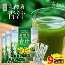 【送料無料】 乳酸菌 国産青汁 9週間分(3g×63本) [