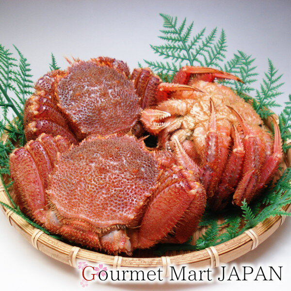 かにのマルマサ 訳あり活毛蟹1.0kg詰め(2〜3尾)
