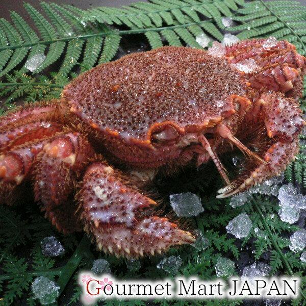 かにのマルマサ 北海道産毛がに 450g 1尾入