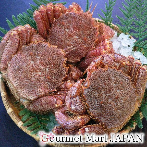 かにのマルマサ 北海道産毛がに 500g 3尾セット