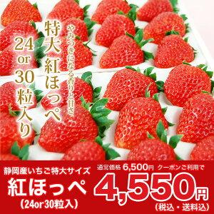 【ふるさと割り】クーポン利用で30%OFF★静岡産紅ほっぺいちご特大サイズ(24or30粒入)…