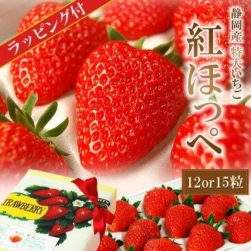 ラッピング付き♪静岡産紅ほっぺ いちご特大サイズ(12or15粒入)