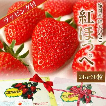 ラッピング付き♪静岡産紅ほっぺいちご特大サイズ(24or30粒入)