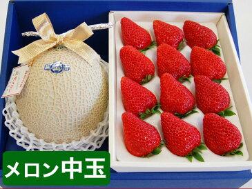 静岡マスクメロン(中玉サイズ)と特大紅ほっぺいちごセット