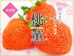 静岡産いちご【桃薫】