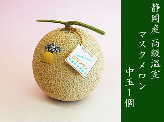 Coupons and offers 30% off ★ Shizuoka while producing aroma mask melon ball size 1 (service box)
