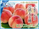 """しっかり選果し確かな品質の桃をお届けいたします。""""太陽が二度昇る""""日本随一の桃の里【山梨・..."""