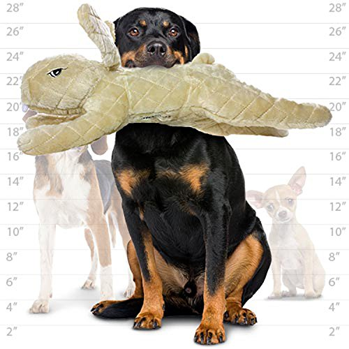 犬おもちゃ イヌ ねこ 病みつき ココ掘れわんわん MTMV-N-Rabbit-Brn Mighty Massive Nature Rabbit Brown犬おもちゃ イヌ ねこ 病みつき ココ掘れわんわん MTMV-N-Rabbit-Brn