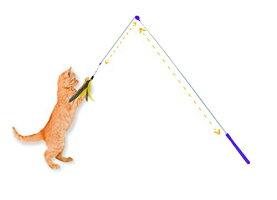 猫おもちゃネコねこ病みつき猫まっしぐら31121JacksonGalaxyAirPreyCatWandCatToy猫おもちゃネコねこ病みつき猫まっしぐら31121