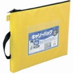 (まとめ)ミワックス キャリーバッグ CB-500-BU B4 マチ無 青【×3セット】