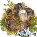 佐賀関産岩牡蠣