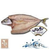 【送料無料】関サバ一夜干し 2Lサイズ 2枚 大分県佐賀関漁業協同組合 ブランド魚 関さば 鯖 干物