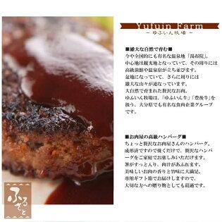 豊後牛ハンバーグステーキ(140g×6個)(豊後牛加工品/MBHS-38)