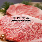 【湯布院牛】サーロインステーキ:180g×4枚(生肉冷蔵便/大分県産/国産/ぶんご牛/牛肉)