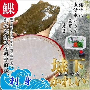 【刺身】城下カレイ(刺身セット3人前)【さしみ/えんがわ/肝/かれい】