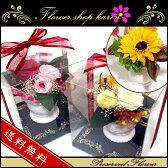 プリザーブドフラワー クリアケース付 夏季限定 ひまわりデザイン 向日葵 お祝いにお花のプレゼント プリザードフラワー 誕生日 結婚祝い 開店祝い 新築祝い ギフト 彼女ホワイトデー 母の日 父の日 敬老の日 クリスマス 商品番号2526