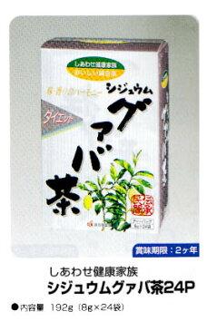 グアバ茶 24p [OSK] 【楽10】