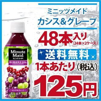 黑醋栗的女僕分鐘 & 葡萄 350 毫升寵物 × 48 件 (24 × 2) 可口可樂公司