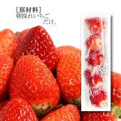 【送料無料】南房総市産冷凍いちご5粒入16パック冷凍フルーツ国産苺【竹内彩】