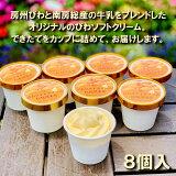 【送料無料】 アイスクリーム びわアイスクリーム 8個 セット スイーツ アイス お取り寄せ グルメ 【枇杷倶楽部】
