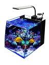 GankPike アクアリウムセット 超クリアガラス水槽 海水魚水槽 (容量 約28L)…