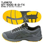 GT-10006G-TX