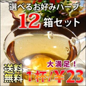 选择保加利亚有机茶叶生产已风行欧洲 12 盒套 240 份!