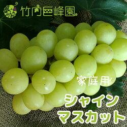 【送料無料】愛媛県内子町産ぶどう竹内巨峰園の朝採りシャインマスカット2kg(家庭用)