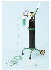 【送料無料】【無料健康相談 対象製品】酸素吸入器(キャリータイプ)    OX-500V【02P29Jul16】
