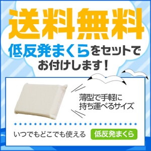 【正規品】トゥルースリーパーエクセレント(シングル)