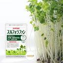 【カゴメ公式】スルフォラファン 93粒(目安31日分) サプリメント 機能性表示食品 ブロッコリースプラウト 肝機能が気になる方へ 2