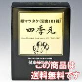四季元 (岩出101株姫マツタケ)【smtb-s】【HLS_DU】