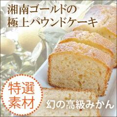 【楽天スーパーセール】 湘南ゴールドの極上パウンドケーキ 【湘南ゴールド】【みかん】【鈴木みか…