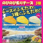 【5月10日発売】スクイーズ SQUEEZE 伸びる炙りチーズ ボールチェーン ストラップ