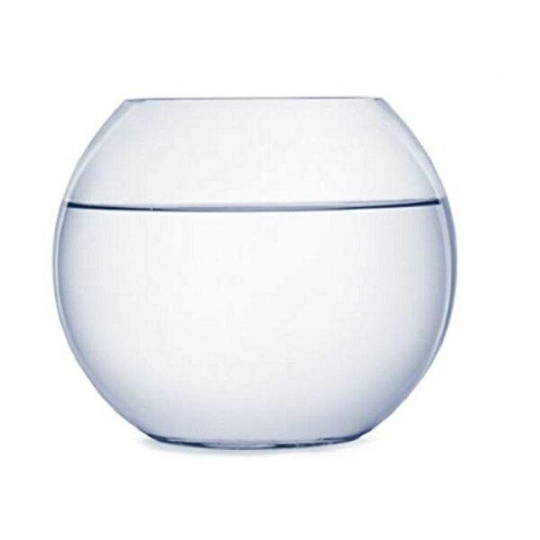 金魚鉢テラリウム花瓶ガラスおしゃれ丸い22cm水鉢メダカ飼い水槽鉢