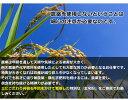 有機栽培の国産玄米粉500g 35年以上無農薬・化学肥料不使用 熊本県産 3