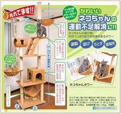【送料無料】【楽天ランキング入賞】 ネコちゃんタワー / つっぱり式 CIO71 キャットタワー