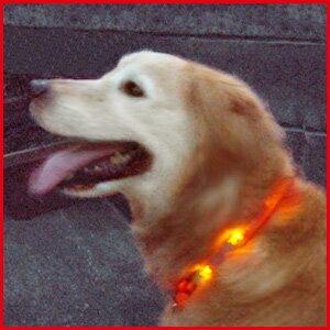 居場所を知らせ、大切な命を事故から守る!【着後レビューでメール便送料無料】 犬型に光る!き...