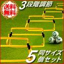 ハードル トレーニング ミニハードル 3段 5個セット 収納...