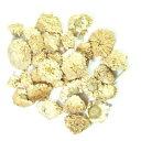 カモミールローマン種は多年草の白い花のみのティーカモミールローマンティー(ローマンカモミ...