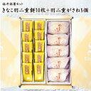 福井伝統銘菓セット 羽二重餅(きなこ)10枚+羽二重がさね5個 その1