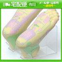 ☆リフレクソロジー足模型(SR-450)足の反射区をカラフルな色彩で表示。実習用教材、患者さんへ...