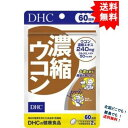 【DHC】濃縮ウコン 60日分 (120粒) × 1袋 【送料無料】