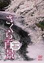 楽天SHOWTIMEで買える「さくら百景 春爛漫【動画配信】」の画像です。価格は108円になります。