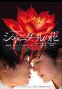 シャニダールの花【動画配信】