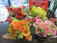 【母の日対象商品】母の日ギフトカーネーションのアレンジ選べる4色♪フリーのメッセージカード付気持ちを言葉にしてお伝えします母の日 カーネーション 花 アレンジメント 生花 フラワーアレンジ プレゼント【花屋】