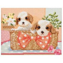 刺繍 キット COSMO(ルシアン) Dog & Flower キャバリア 【メール便可】[手芸材料の通信販売 シュゲール]
