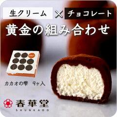 春華堂公式 当店リピート率NO.1 カカオの雫9ヶ入|バレンタイン:チョコレート ランキング
